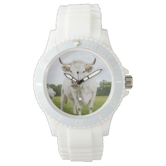 Cow standing in grassy field wristwatch