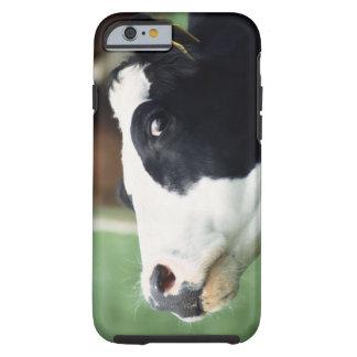 cow tough iPhone 6 case