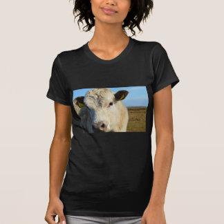 Cow up close T-Shirt