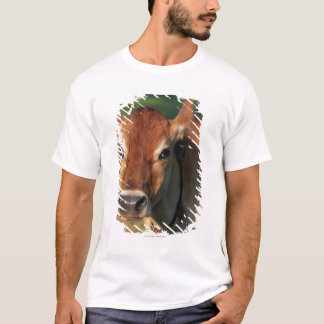 Cow Wearing a Cowbell T-Shirt