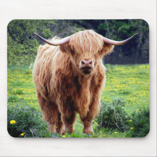 Cow with big horns beautiful nature scenery mouse mat