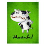 Cow with Moustaches Postcard