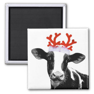 Cow with Reindeer Antlers Square Magnet