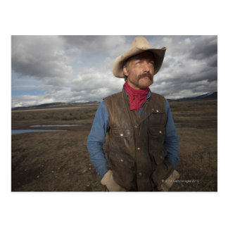 Cowboy 3 postcard