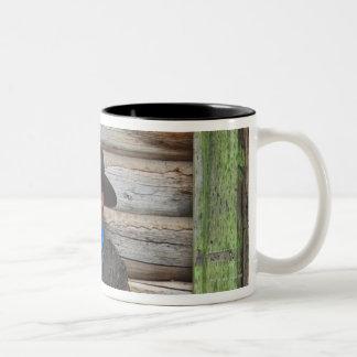 Cowboy 6 Two-Tone coffee mug