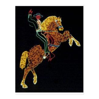Cowboy and Horse Postcard