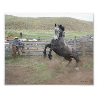 Cowboy and Mustang Art Photo