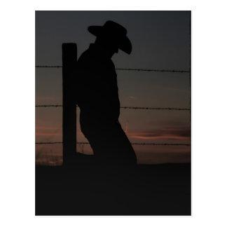 Cowboy at sunset postcard