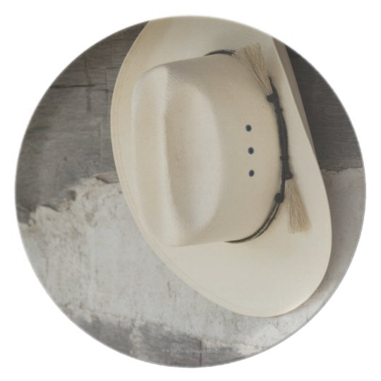 Cowboy hat hanging on wall of log cabin plate