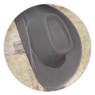 Cowboy hat on fence plate