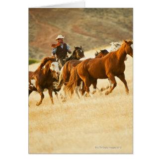 Cowboy herding horses 3 greeting card