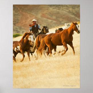 Cowboy herding horses 3 poster