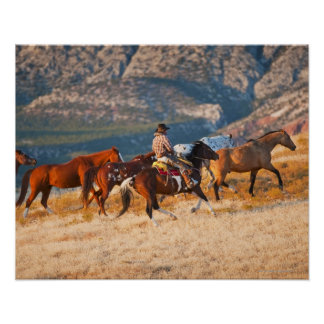 Cowboy herding wild horses 2 poster