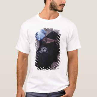 Cowboy in a Rodeo 3 T-Shirt