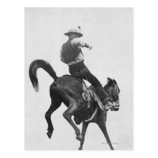 Cowboy Ned Coy Riding Bronco Postcard