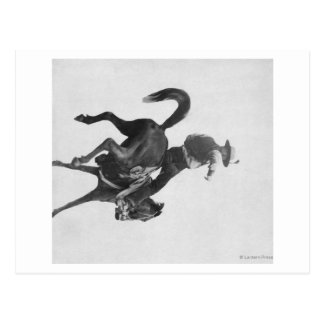Cowboy Ned Coy Riding Bucking Bronco Named Postcard