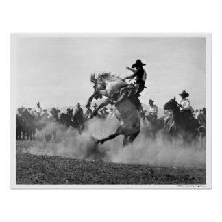 Cowboy on a bucking bronco poster
