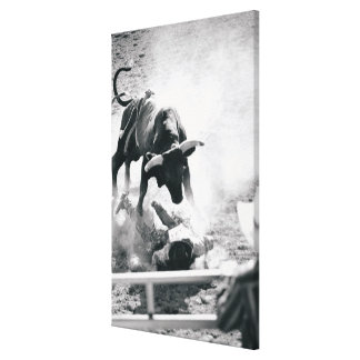 Cowboy on ground after falling off bull canvas print