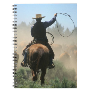 Cowboy on horse with lasso driving cattle notebooks
