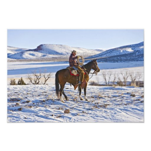 Cowboy riding a horse on the range on The Photo Art