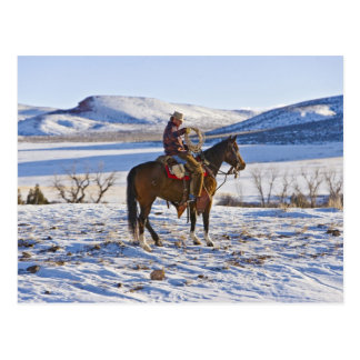 Cowboy riding a horse on the range on The Postcard