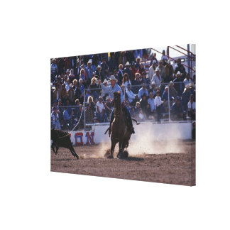Cowboy Roping Calf at Rodeo Canvas Print