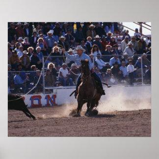 Cowboy Roping Calf at Rodeo Posters