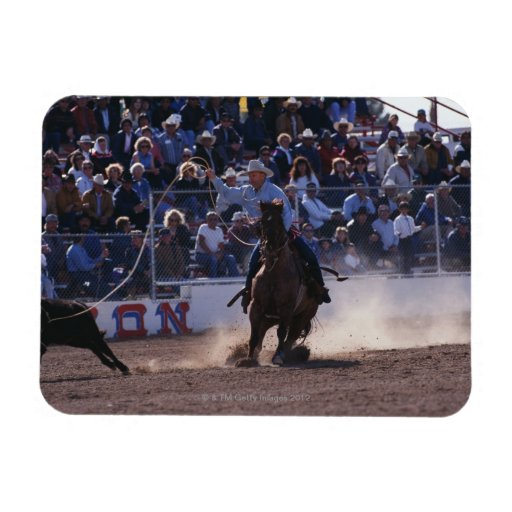 Cowboy Roping Calf at Rodeo Rectangle Magnet