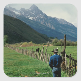 Cowboy walking along fenced pasture Teton Range Square Sticker