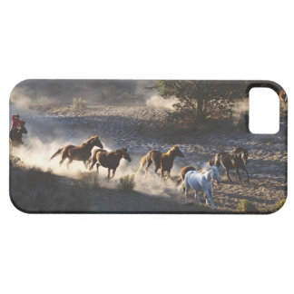 Cowboy with herd of horses iPhone 5 covers