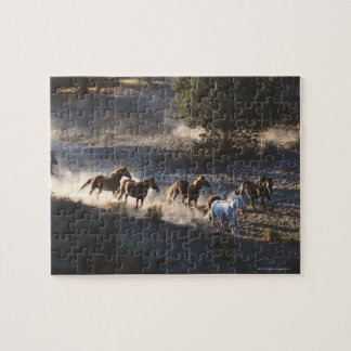 Cowboy with herd of horses jigsaw puzzle