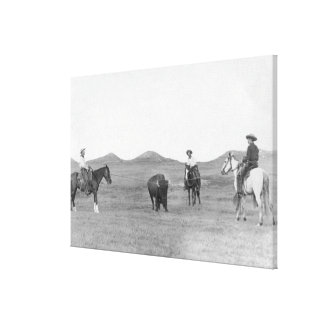 Cowboys on Horses Roping Buffalo Photograph Canvas Print