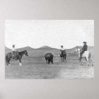 Cowboys on Horses Roping Buffalo Photograph Poster