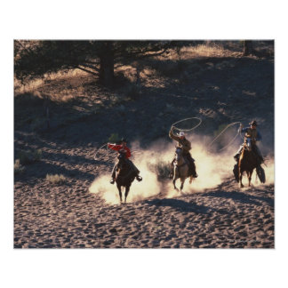 Cowboys riding poster