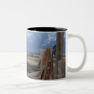 Cowgirl 3 Two-Tone coffee mug