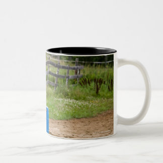 Cowgirl on horseback practicing barrel racing in Two-Tone coffee mug