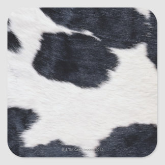 Cowhide Print Square Sticker