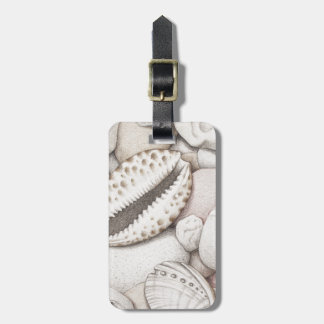 Cowrie & Abalone Shells & Pebbles in Colour Pencil Luggage Tag