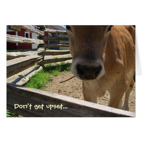 Cows 50th Birthday Card