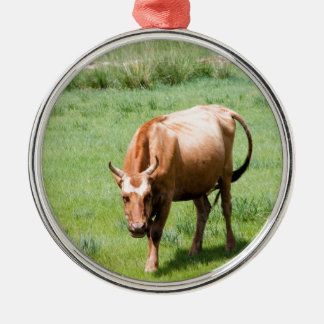 cows and bulls christmas ornament