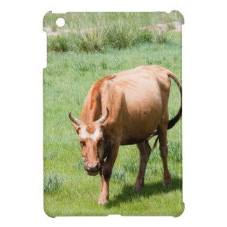 cows and bulls iPad mini covers