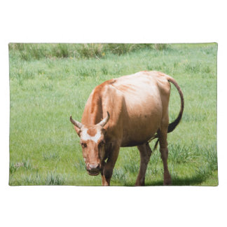 cows and bulls placemat