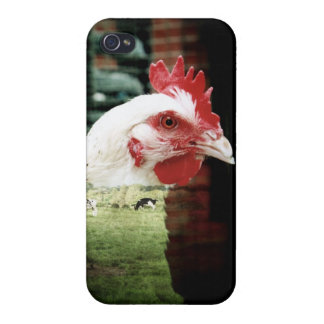 Cows and chicken case iPhone 4/4S cases