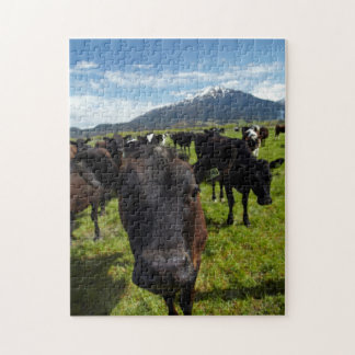 Cows and Mt Somers Jigsaw Puzzle