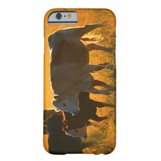 Cows at pasture 2 barely there iPhone 6 case