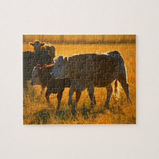 Cows at pasture 2 puzzle