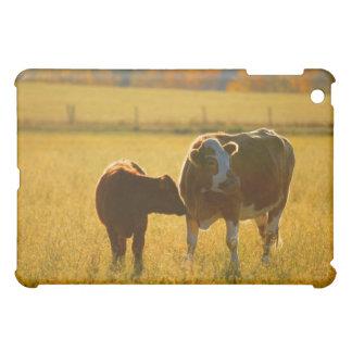 Cows at pasture iPad mini covers