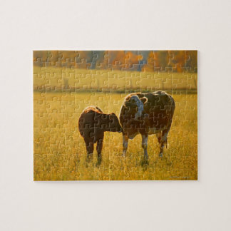 Cows at pasture jigsaw puzzle