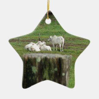 COWS BRAHMAN & FENCE POST RURAL AUSTRALIA CHRISTMAS ORNAMENT