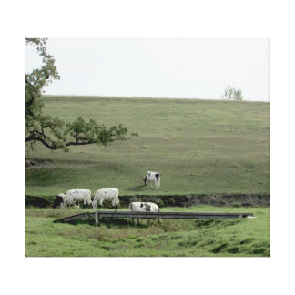 Cows by a Bridge Photography Wall Art